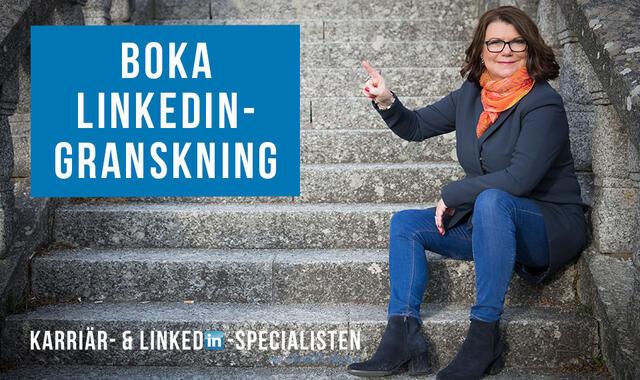 LinkedIn-granskning